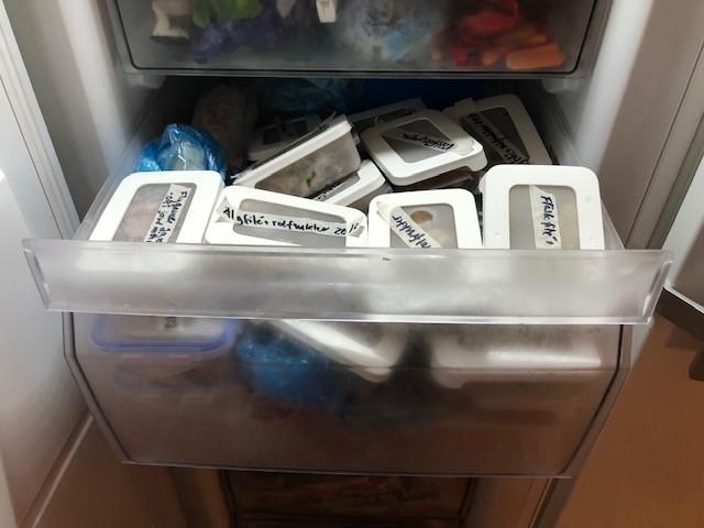 Låda i frysen, full med matlådor